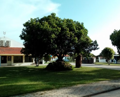 Jardim Infantil - Camping Serrão